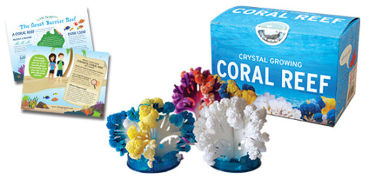 Little Passports Coral Reef Kit