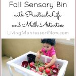Montessori Monday – Fall Sensory Bin with Practical Life and Math Activities