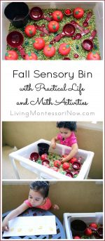Fall Sensory Bin with Practical Life and Math Activities