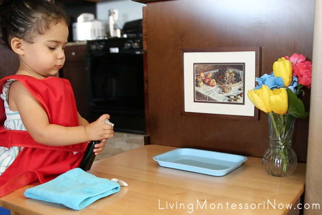 Spraying a Table with Water at 21 Months