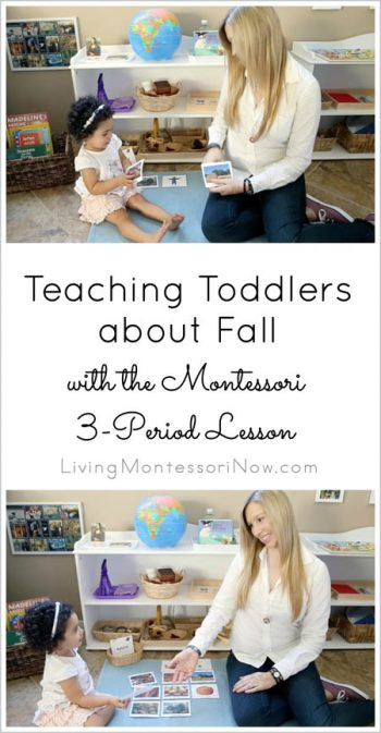 Teaching Toddlers about Fall with the Montessori 3-Period Lesson