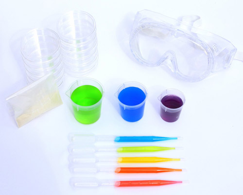 """The Curious Kid's Science Book"" Science Kit"