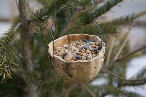 Gourd Bird Feeder (Photo from Kitchen Counter Chronicles)