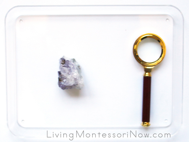 Nature Tray with Amethyst and Magnifying Glass