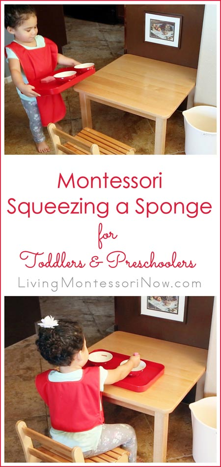 Montessori Squeezing a Sponge Activity for Toddlers and Preschoolers