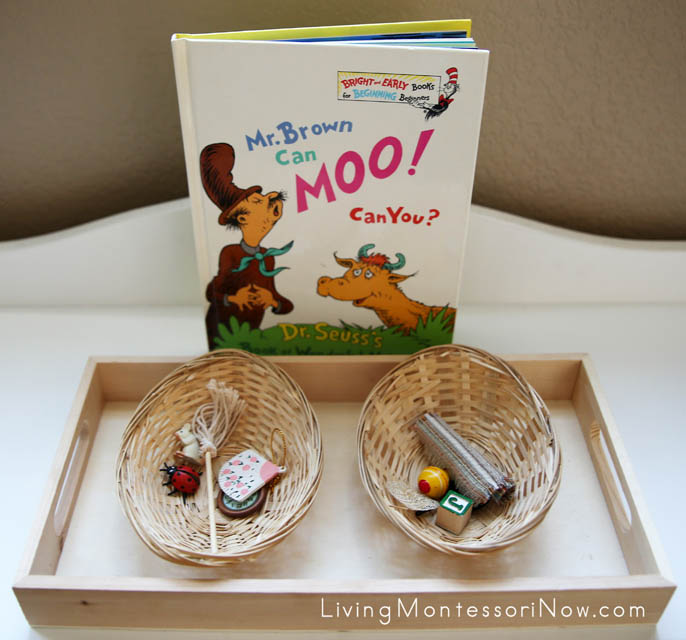 Montessori-Inspired Rhyming Fun for Toddlers and Preschoolers