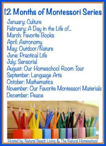 12 Months of Montessori Series