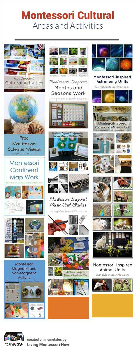 Montessori Cultural Areas and Activities