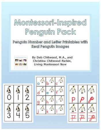 Montessori-Inspired Penguin Pack