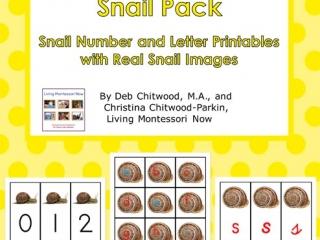 Montessori-Inspired Snail Pack