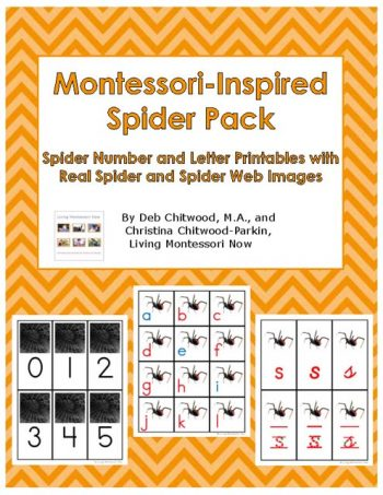 montessori-inspired-spider-pack