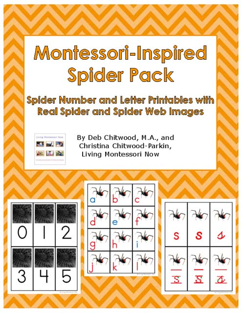 Montessori-Inspired Spider Pack