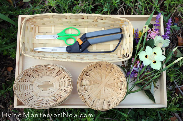 Nature Cutting Tray for Nature Walk with Adult and Child