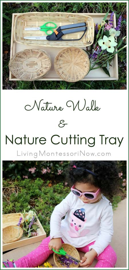 Nature Walk And Nature Cutting Tray For Toddlers And Preschoolers