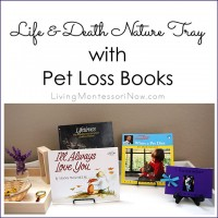 Life and Death Nature Tray with Pet Loss Books