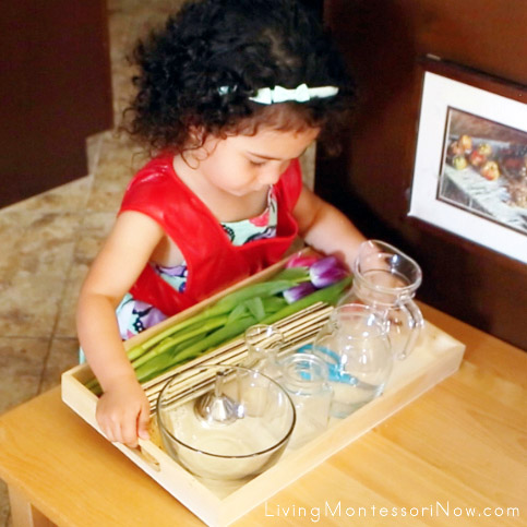 Carrying a Heavy Tray with Glass Containers for Montessori Flower Arranging