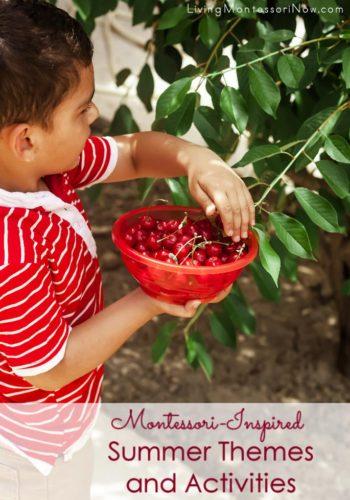 Montessori-Inspired Summer Themes and Activities