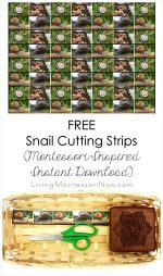 FREE Snail Cutting Strips (Montessori-Inspired Instant Download) – Montessori Monday
