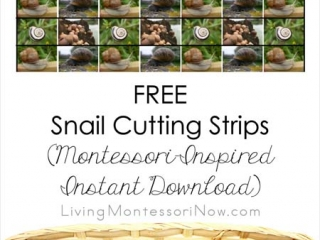 Free Snail Cutting Strips (Montessori-Inspired Instant Download)