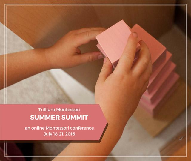 Trillium Montessori Summer Summit 2016