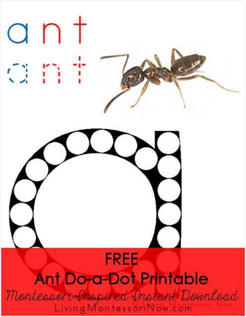Ant Do-a-Dot Printable (Montessori-Inspired Instant Download)