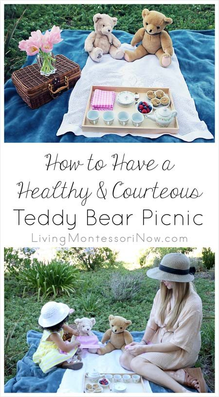 How to Have a Healthy and Courteous Teddy Bear Picnic