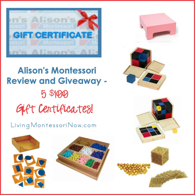 Alison's Montessori Review and Giveaway - 5 $100 Gift Certificates!