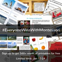 Everyone Wins with Montessori Giveaway - Limited Time