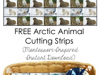 Free Arctic Animal Cutting Strips (Montessori-Inspired Instant Download)