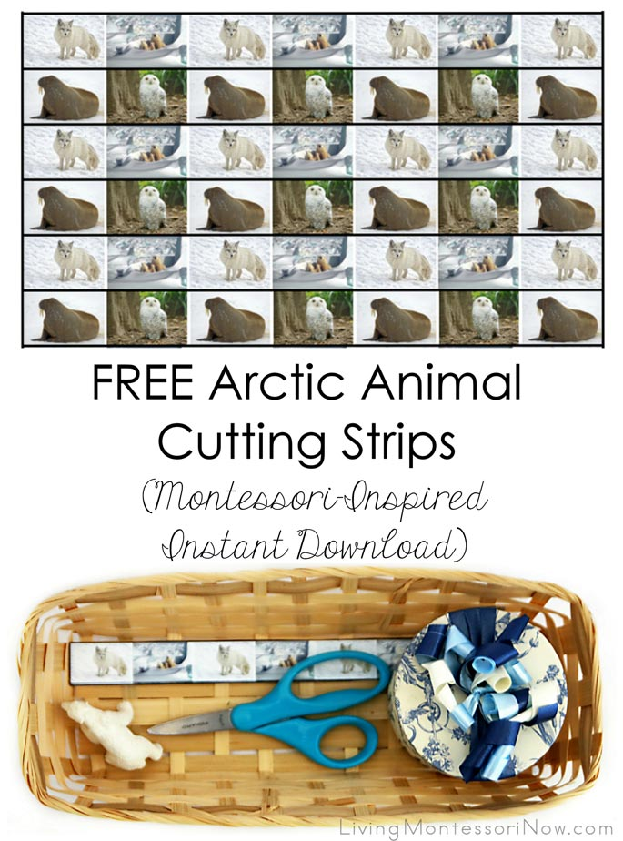 Free Arctic Animal Cutting Strips (Montessori-Inspired Instant Download) – Montessori Monday