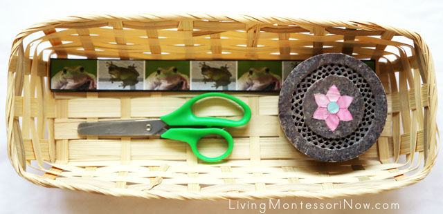 Basket with Frog Cutting Strips