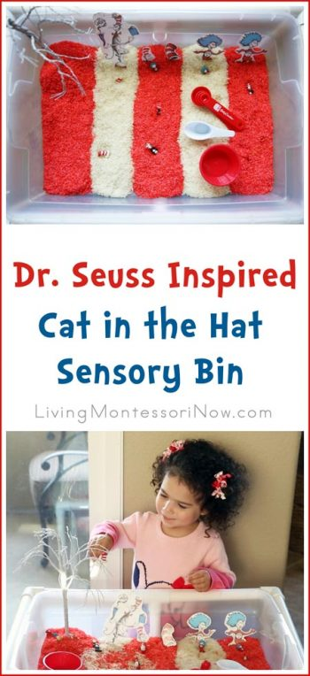 Dr. Seuss Inspired Cat in the Hat Sensory Bin