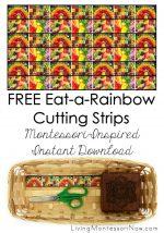 FREE Eat-a-Rainbow Cutting Strips (Montessori-Inspired Instant Download) – Montessori Monday