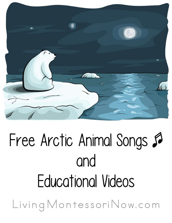 free arctic animal songs and educational videos living. Black Bedroom Furniture Sets. Home Design Ideas