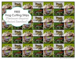 Free Frog Cutting Strips (Montessori-Inspired Instant Download)