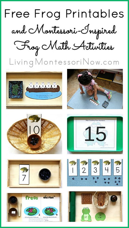 Free Frog Printables and Montessori-Inspired Frog Math Activities {Montessori Monday}