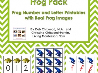Montessori-Inspired Frog Pack