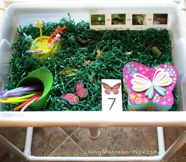 Butterfly Sensory Table