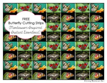 Free Butterfly Cutting Strips (Montessori-Inspired Instant Download)