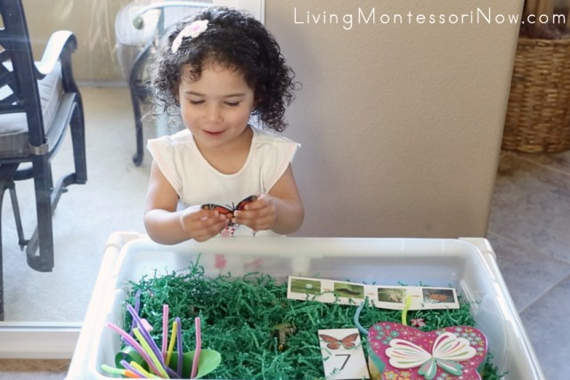 Having fun with the butterfly sensory bin