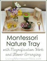 Montessori Nature Tray with Magnification Work and Flower Arranging