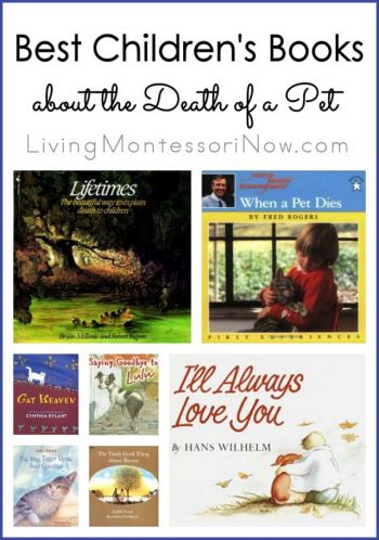 Best Children's Books about the Death of a Pet