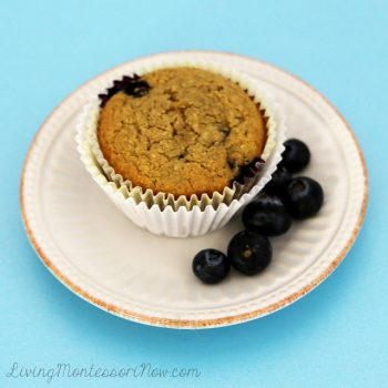 Healthy, Yummy, Gluten-Free Blueberry Muffin