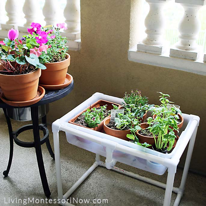 DIY Sensory Table with Plantings Plus Table Planters