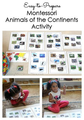 Easy-to-Prepare Montessori Animals of the Continents Activity