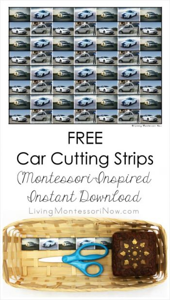Free Car Cutting Strips (Montessori-Inspired Instant Download)