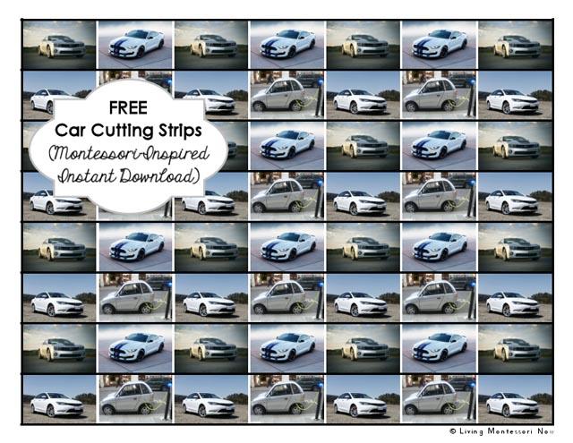 Free Car Cutting Strips