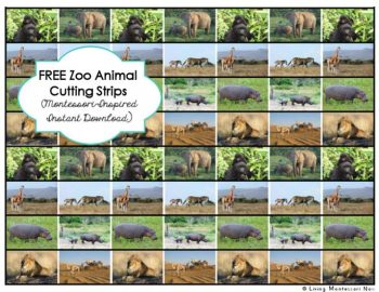 FREE Zoey Animal Cutting Strips (Montessori-Inspired Instant Download)