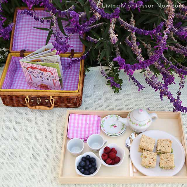 Items Used for Healthy and Courteous Tea Party Picnic