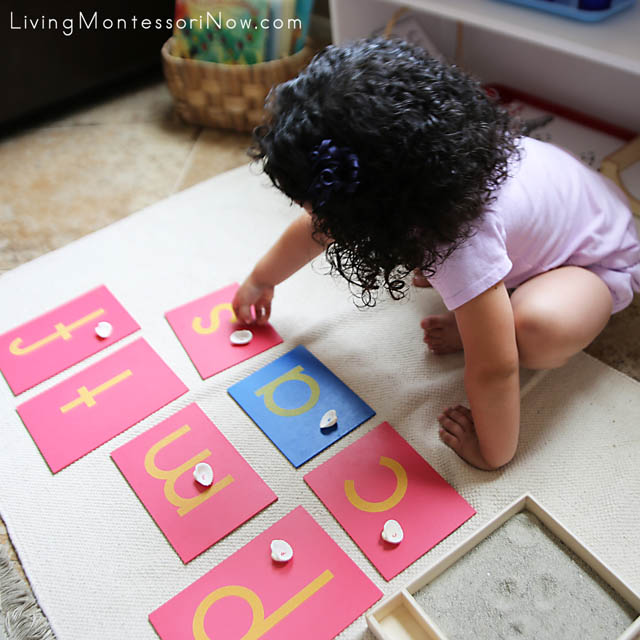 Matching Seashell Letters with Sandpaper Letters